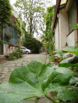 balades urbaines à Paris - source photo Ca se visite