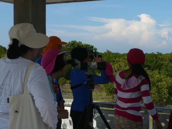 Ecoconut - Ecotourisme et observation des oiseaux migrateurs