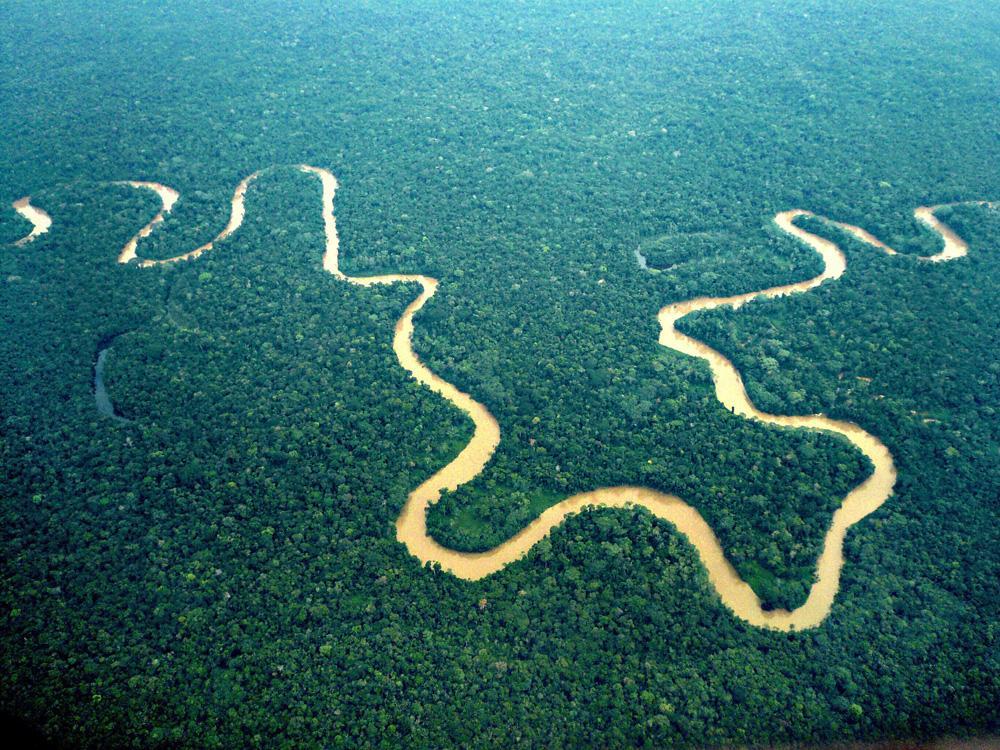 Croisière en Amazonie