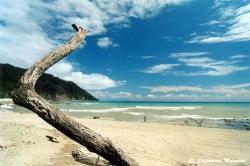 Carnet de voyage - Photos du Costa Rica