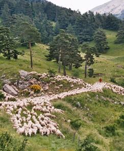 RandoPays dans le Vercors avec Hommes et montagnes