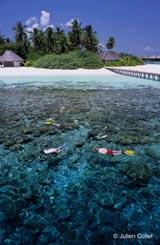 Snorkeling - source : Julien Collet