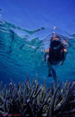 Pratique du Snorkeling