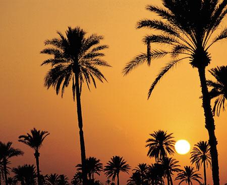 Couché de soleil en Tunisie