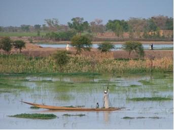 Tamadi - voyages solidaires au Mali