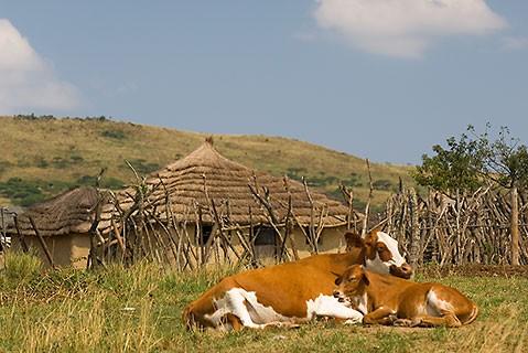 tourisme équitable en Afrique du sud
