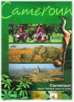 Destination Cameroun