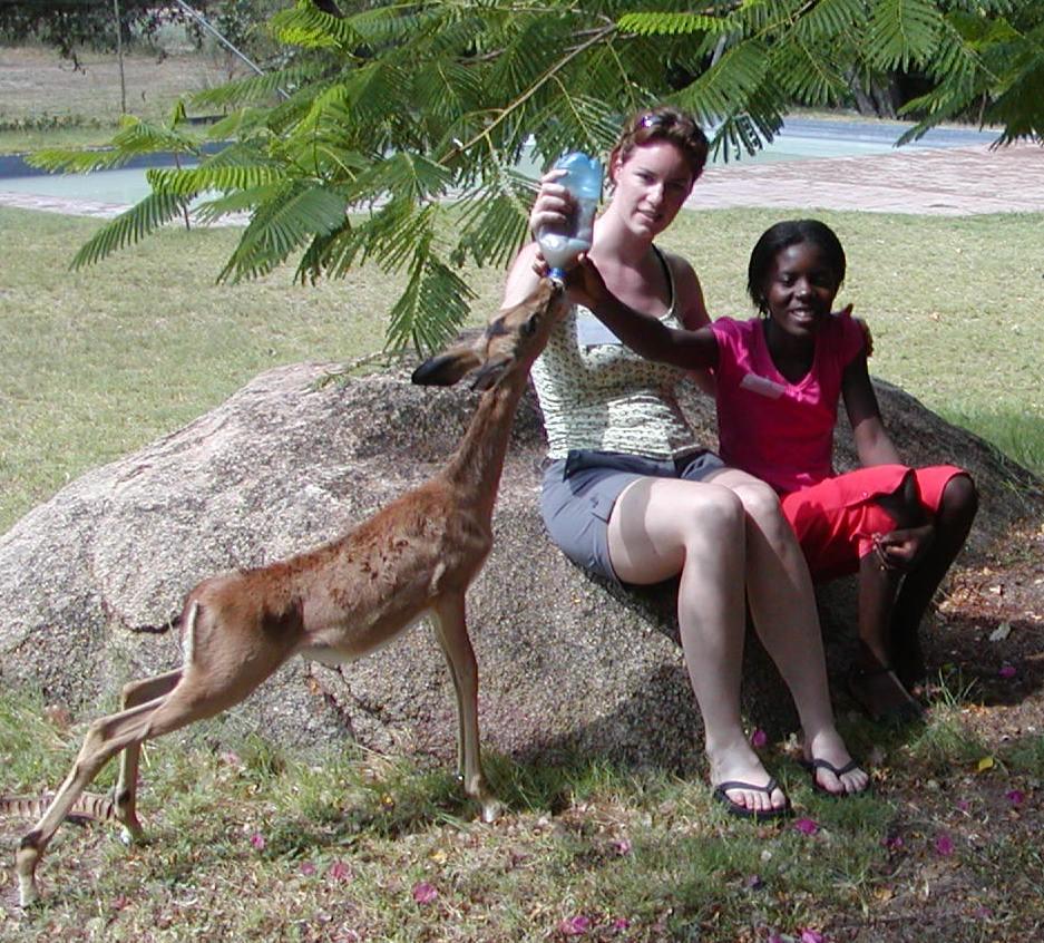 DAKTARI - Missions pour les éco-volontaire en Afrique du sud