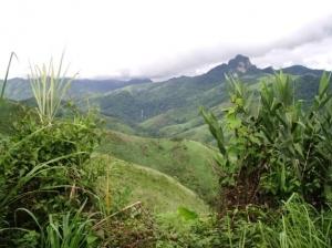 Montagne en partie déforestée dans le nord du pays.