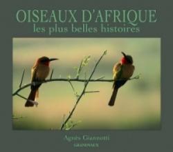 Oiseaux d'Afrique, les plus belles histoires
