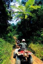 le tourisme peint en vert