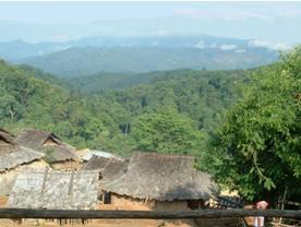 Vue depuis l'hébergement d'un village Akha