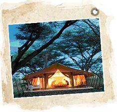 Kenya - Réserve de Shaba