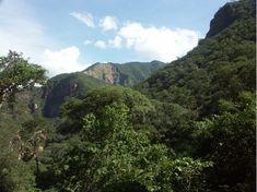 réserve de biosphère de Las Yungas