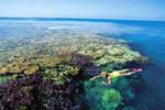snorkeling en australie