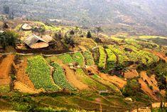 tourisme solidaire vietnam
