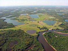 Réserve de Pantanal - écotourisme au Brésil