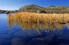 voyage ecologique en Norvège