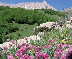 Tourisme Hautes-Alpes