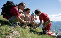 Patrimoine naturel et biodiversité dans les Hautes Alpes