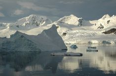 Baie de Neko Harbour, antarctique – © Rita Willaert