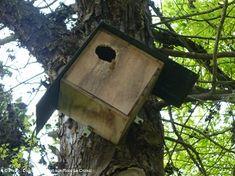 Chouettes idées : mutualiser les bonnes pratiques des villages vacances Chouette Nature
