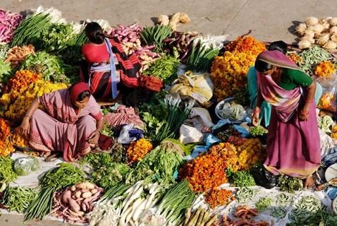 voyage-vegetarien-inde-du-sud