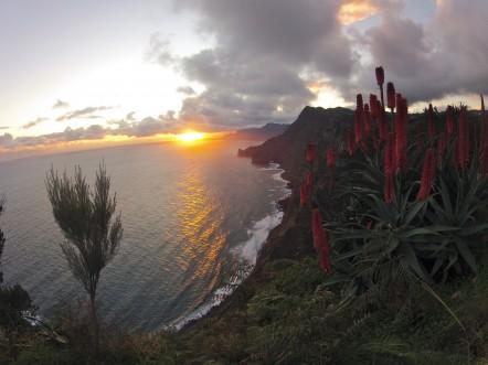 Lever de soleil sur la pointe de São Lourenço
