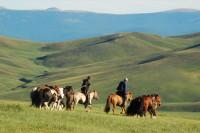 La Mongolie avec Nomad Planet