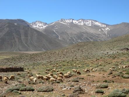 Trek Maroc Nomades Ait Atta