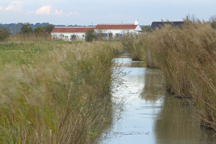 Colloque Tourisme & Biodiversité