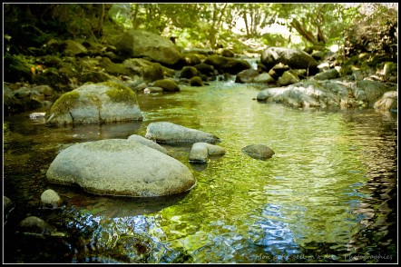 rivière au fil de soi