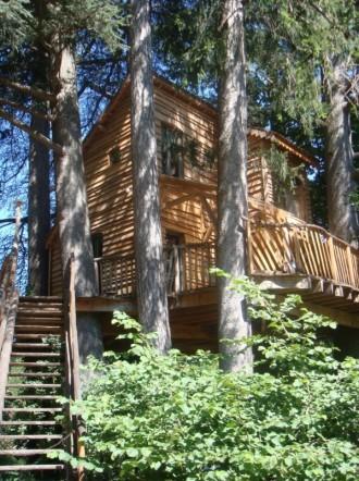 Un accueil tout confort dans cette cabane écologique perchée à 8 m