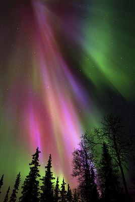 L'espoir  une aurore de grande intensité