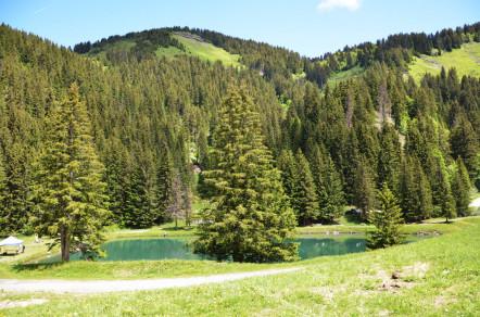 Pour partir à la montagne cet été, n'oubliez pas votre maillot de bain ! © OTValdArly