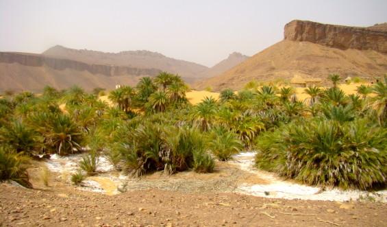 Adrar Mauritanie