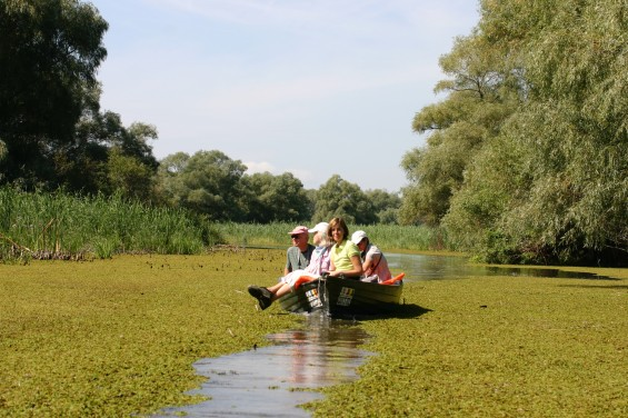 Project Landscape of the Year Danube Delta