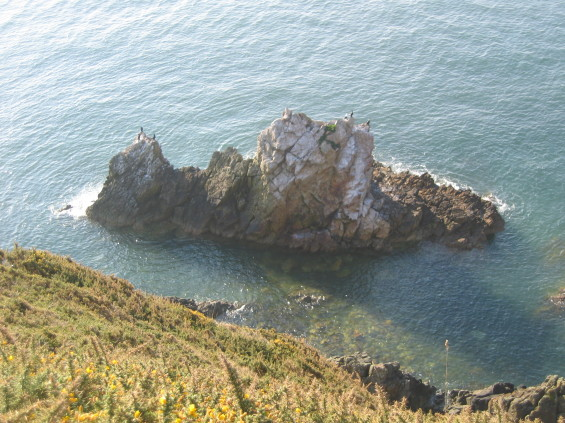 View from Howth Summit