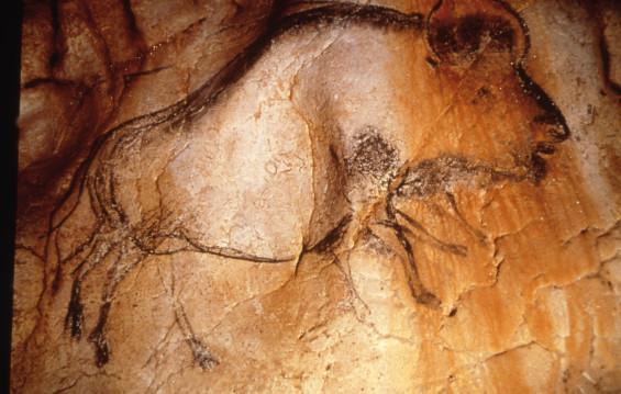 Grotte ornée de Vallon Pont d'Arc@DRAC Rhônes-Alpes