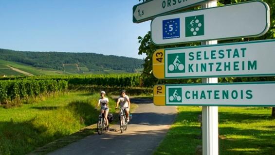 l'Alsace à Vélo -  copyright : ADT 67 - Infra / Alsace à vélo