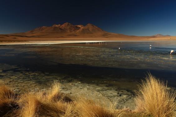 Traversée du Sud Lipez, BOLIVIE © Viventura