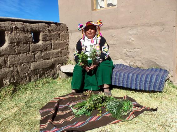 TDA au Pérou