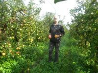 L'agriculture bio