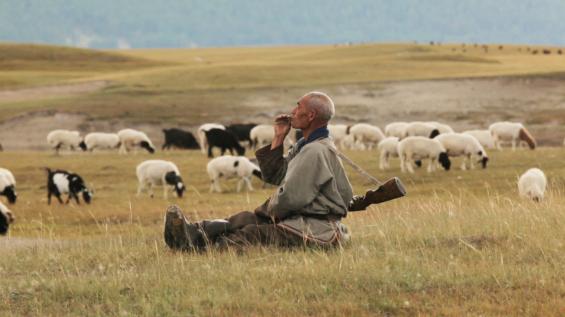 © Taïga : une superbe rencontre en Mongolie