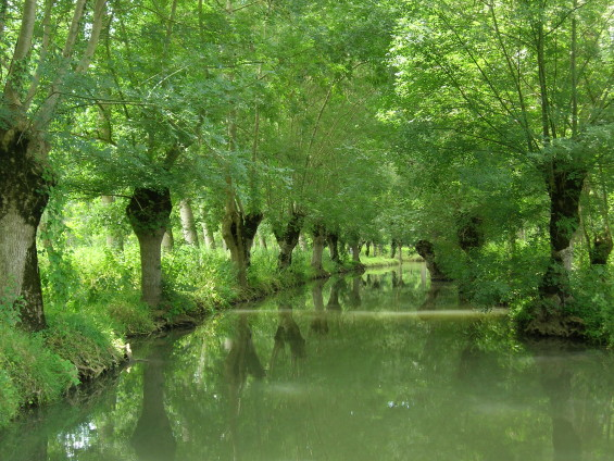 Grand site Marais