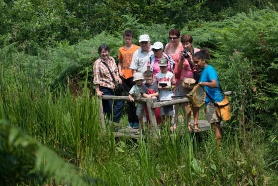 Tourisme biodiversité
