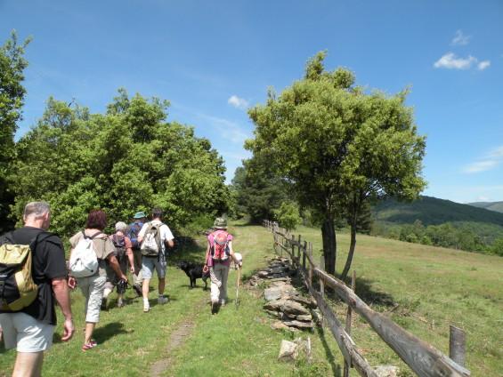 une marche organisée par le gîte du Ravel dans le Gard