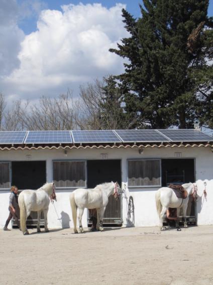 des panneaux solaires discrets