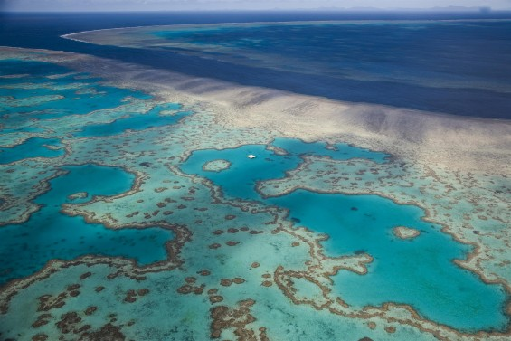 Aerial view of the Great Barrier reef off the Whitsunday Islands.