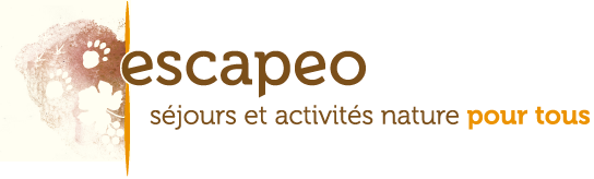 Logo Escapeo